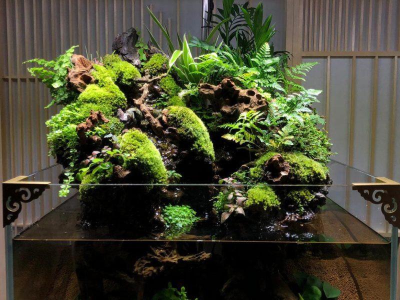 Meeting Room (600型 中魚缸)