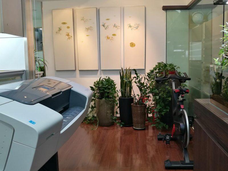 上海事务所